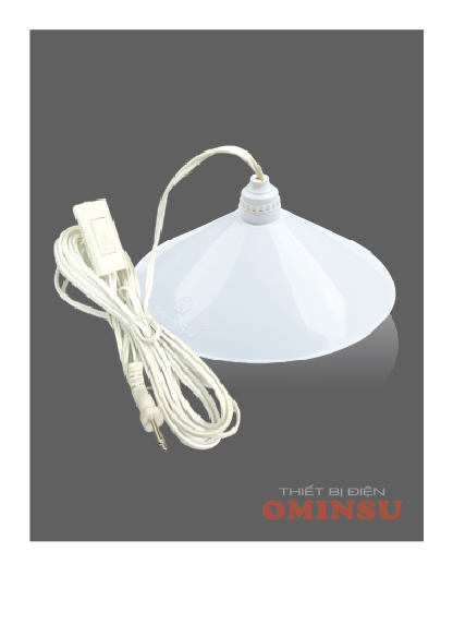Chao đèn loại gắn kèm đui liền dây.