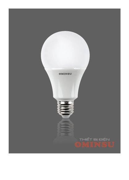 Led Bulbs 04V (9W).